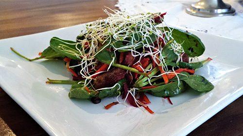 Mixed Raw & Warm Salad