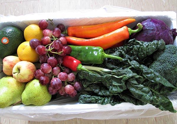 Organic - Life Energised